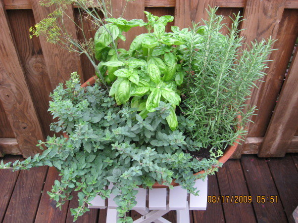 I LOVE FLOWERS!, My herb garden!  , Gardens Design