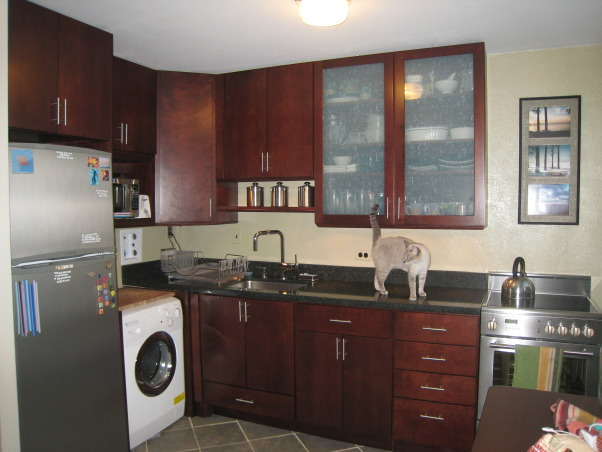 Small kitchen remodel, Small kitchen in condo. New cabinets, sink stove, refrigerator, and used combo washer/dryer. , We love our Grohe pullout spray faucet and having a dishsoap dispenser.   , Kitchens Design