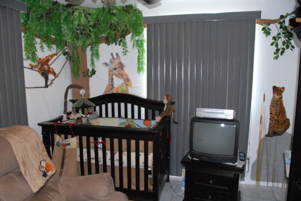 It's a Jungle in Here!, The goal in designing my son's room was that it be colorful, full of texture & three-dimensional.  Each scene is made up of at least three layers of media.  I tried to carry the jungle theme throughout the nursery by having branches continue through the verticle blinds & appear on the next wall. The trees were made out of foam board. Then we added contact paper, jungle themed paper & various layers of greenery. The animal photos were taken at various zoos & blown up to poster size (20 x 30). We cut them out & glued them to poster board then adhered them to the wall with liquid nails.  We used various shades of grasses & cattails over a green hill for the baby zebra scene.  The cheetah's rock was painted with Ralph Lauren River Rock paint to add a rough texture & completed the scene with tall grass.  Finally, the orangutan & giraffe have manilla rope & netting to give them an extra layer.  These will be removed once our baby boy is old enough to cause any havoc! ; )  It was a huge project that my niece, nephew & I worked on during my maternity leave. One pleasant surprise in the design was the movement in the greenery when the ceiling fan is on. The gentle rustling of the leaves & grass add a nice touch that really makes the room come alive. The nursery turned out just as I had hoped & I'm thrilled every time my newborn son curiously stares around at the jungle in his room! , Welcome to baby Nicholas' jungle! The huge tree has layers of greenery that add dimension & movement to the room. A giraffe peeks into the crib & an orangutan swings through the trees.  On the right, a cheetah waits patiently for his next prey in this jungle scene.          , Nurseries Design