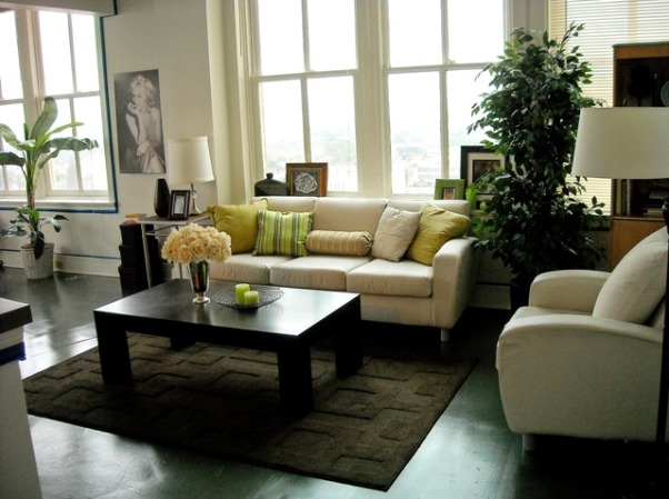 Downtown Apartment Living, Contemporary Living in Downtown Jacksonville   , Living Rooms Design