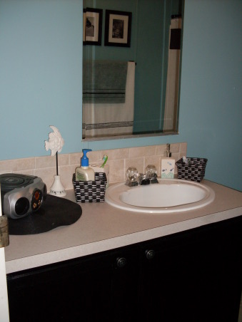Lime Green to Serene Blue, Calming blue bathroom with black and white accents., Bathrooms Design