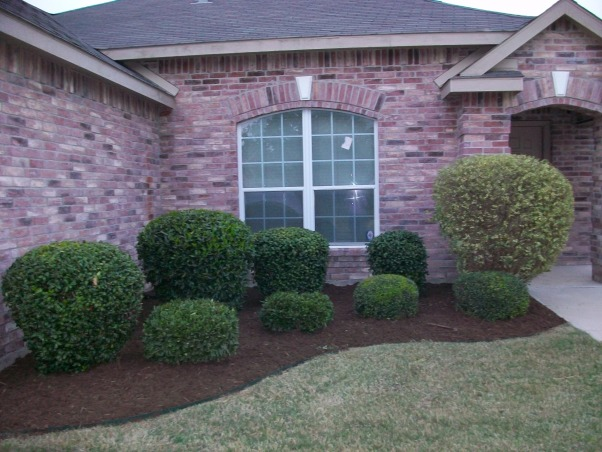 Information about rate my space questions for - Front yard flower bed designs ...