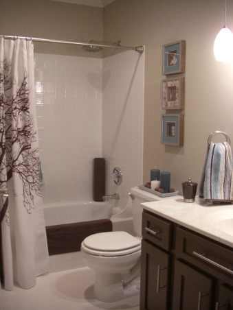 $450 bathroom update Before/After, This is my hall bath redo. I was inspired by another ratemyspacer who told me where to get the shower curtain she had in her space. I love the results for a total of $450 bucks!, My old bath was a little bit country and my new bath is a little bit eco spa:-) I love the shower curtain which was inspired by another spacer! I am loving brown and blue for house full of boys. , Bathrooms Design