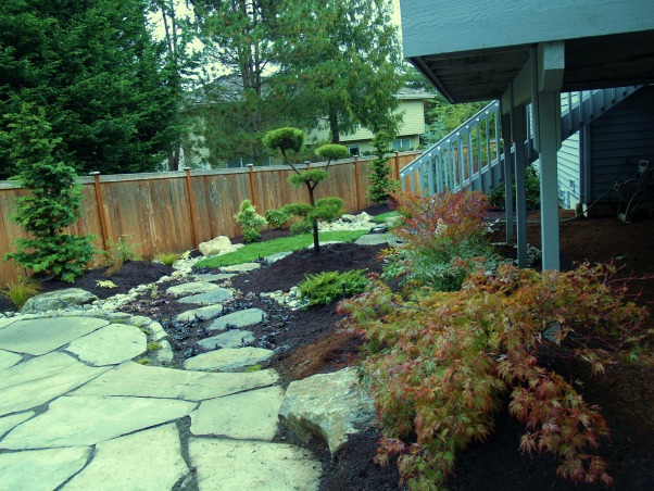 Japanese Zen Backyard, Just completed Zen backyard using plants that are native to the Pacific Northwest.  This is wonderful design for small backyard spaces., Patio is finished around the edges with moss. Would like to have put in a water feature but again the dogs.....don't want wet feet coming in the doggie door all day.  I'm thinking about a propane fire bowl.  Dogs tend to stay away from my fireplaces.    , Yards Design