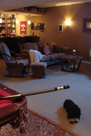 """""""Penny Floor"""" game room, 52,000 pennies used for our game room floor.Custom bar with early 1900's woodwork. Cozy fireplace surrounded in slate tile with a solid oak mantel. , Our dog, Zorra is enjoying the fireplace on a cold day. , Basements Design"""