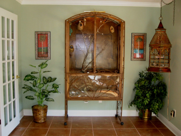 Tropical Florida Room, Tranquil Florida Room brings the outside in with tropical decor and live Exotic Finches., My husband built this bird cage from an arbor turned around backwards.  , Other Spaces Design