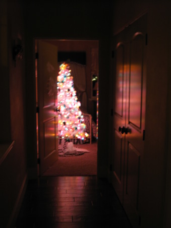 NorthWest Home For The Holidays, Welcome to our new home for it's very first Christmas.  Please make yourself at home., The view of my daughter's tree from down the hall.     , Holidays Design