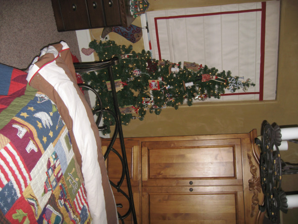 NorthWest Home For The Holidays, Welcome to our new home for it's very first Christmas.  Please make yourself at home., My son's Christmas tree., Holidays Design