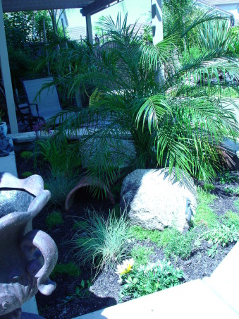 Back Yard Re-Make, Planter on the left is actually a turtle habitat designed to house my box turtle Freddie! (Photo taken before foliage had a chance to grow in.), Yards Design