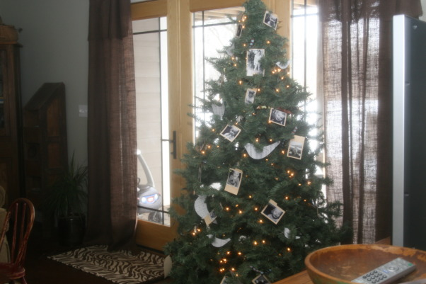 Holiday HOme Tour, We participated in our local home tour this year...whew...I have been doing Christmas since Halloween!  Lots of work....but lots of fun!, Downstairs tree inspired by a Country Living photo  , Holidays Design