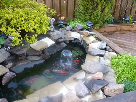 Zen Garden, The fish pond that is now the Zen Garden., Gardens Design
