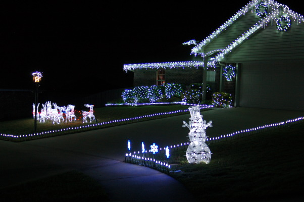 Cool White Led Christmas Lights images