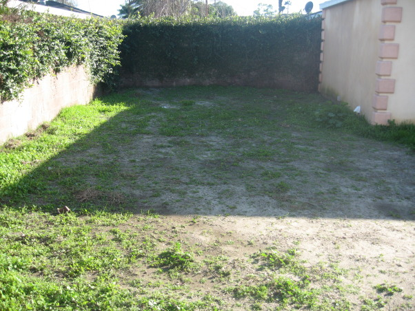 Ugly Backyard Needs Help, We bought our home 3 months ago and we have a backyard that is ~2000 sqft. but its empty, dirt everywhere with tons of weeds growing all over the place.  We need some ideas.  We want a nice space for our 3 young children and our German Shepard.  Budget is very tight with about $500 right now and about $100 a month to invest.  Current plan is to till the ground, grade for runoff and seed grass. We're able to put in the time and effort necessary to get this done, but we're both completely unexperienced and have no imagination., This is the empty space behind our garage.  We don't care for the stuff growing on the walls.              , Yards Design