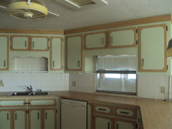 difficult kitchen cabinets , new kitchen needs color help, a limited budget means I needs some creative ideas color is wrong, help!, Kitchens Design
