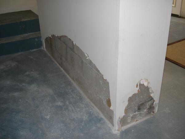 Kids Game Room, It's a basement that's attached to the house but has it's own seperate enterance. Ideally we would love to use this room as a game room for our kids but, we're having mold issues and it's in desperate need of help to restore and and use the space. Please help!!!, This is the third wall with mold damage. The room is very cold and smells like mildew. We need help in fixing it and decorating it to ideally have a game room for our kids., Basements Design