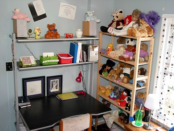 14/15 Year Old Girl's Room (2006), I'm almost 19, but I thought I'd get some opinions on my bedroom from when I was 14 or 15. Did I love the room? No, not really, but I worked with what I had. , My desk area and large stuffed animal collection, Girls' Rooms Design