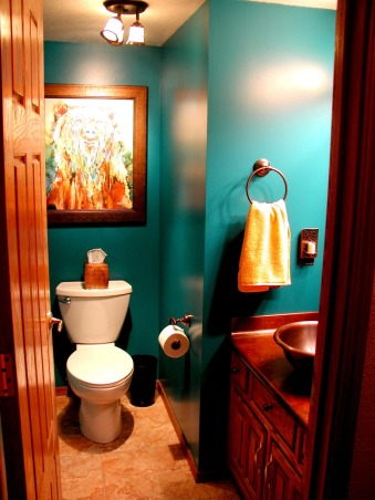 stunning teal color bathroom decor | Information About Rate My Space | Questions for HGTV.com ...