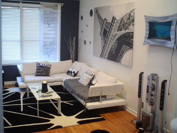 Black and White Living room, I opted for Black and white, I travel a lot and wanted to come home to a space that wasn't as colorful as the many hotels I stay in. , Living Rooms Design
