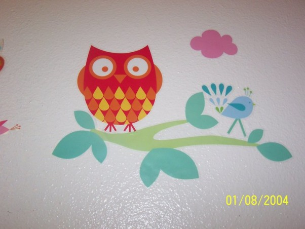owl themed room, this is my daughters new owl themed bedding and room, it's not finished yet. She is 11 I am hoping the owl theme is age appropriate and not to younge for her what do others think? Not that I could change it now anyway because she shares with a 2 and 3 year old and I just ordered them the love and nature owl bedding.. but so is an owl theme good for her age??, Bedrooms Design