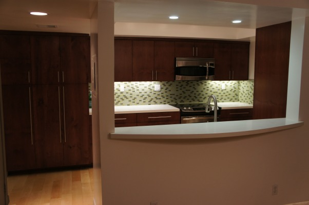 Contemporary Galley Kitchen Remodel (Before & After), Contemporary Galley Kitchen Remodel (Before & After), Kitchens Design