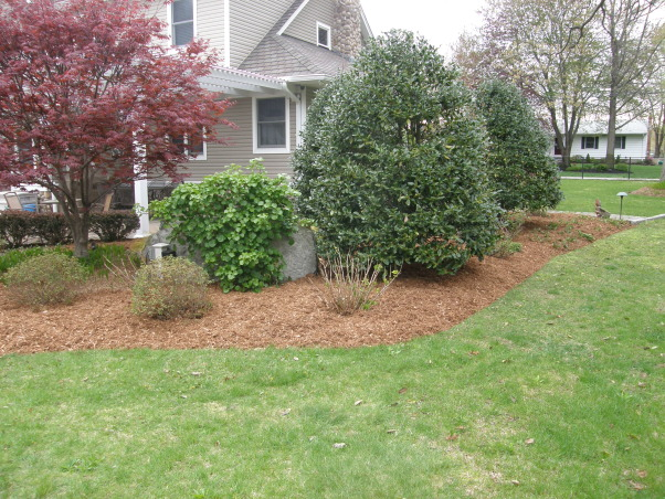 Mulch, mulch and more mulch!!!, Back yard patio., Back side of the waterfall., Yards Design