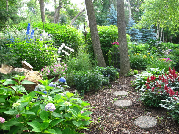 Summer's Reward, A one acre lot full of annual and perennial beds in minnesota, Endless summer hydrangea, red astilbe         , Gardens Design