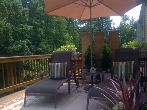 My Small Townhouse Deck 2011, I love to sit out here and sun and watch the hummingbirds come to the feeder and catch the deer coming out of the woody reserve behind my house., Patios & Decks Design