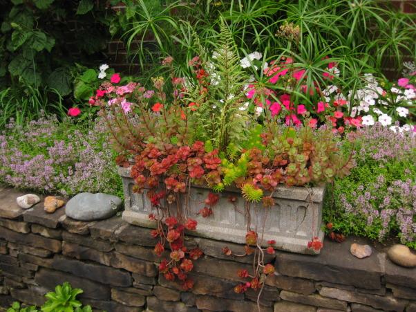 RIOT OF COLOR, Gardens Design