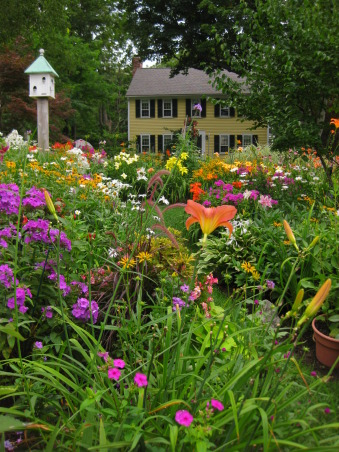 RIOT OF COLOR, Gardens Design