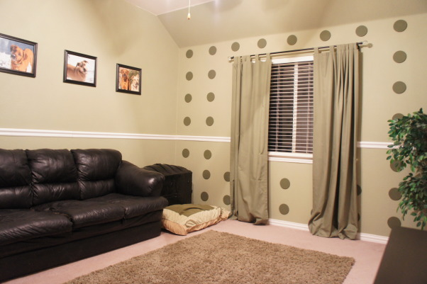 From Guest Bedroom to Dog Bedroom, I recently transformed a guest bedroom into a room just for the dogs., Bedrooms Design