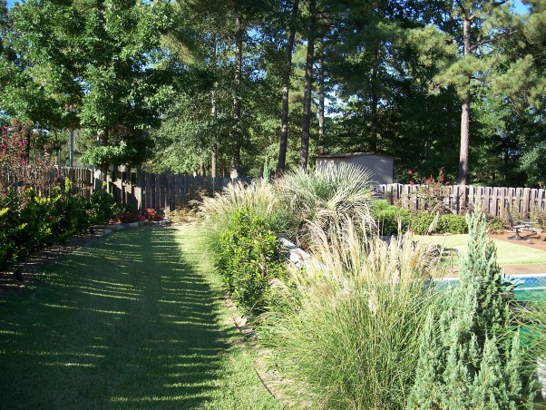 Backyard Makeover, The backyard was fenced in with a pool but needed a design.  we did a complete makeover with a pergola over the original patio. , Fountain grass and shrubs behind retaining wall , Yards Design
