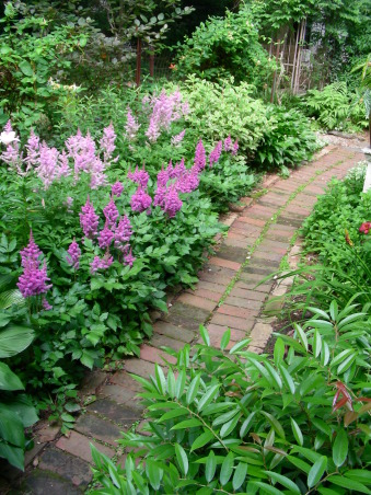 "shady serpentine walk, Difficult spaces require creative solutions:  What to do with a very long and narrow yard? A graceful serpentine path of different materials winds through different outdoor rooms in the shade.  This upload starts the show, but other downloads by nwphillygardener continue to show this unique shade garden., Two tones of Astilbe are striking largely because of their different heights.  And you can see, the last of the taller pale white and pink Asiatic lilies that precede the Astilbe bloom.  Some years they all bloom simultaneously!  [see my follow up downloads which feature this floral ""event""], Gardens Design"