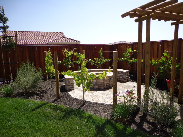 Outdoor Bar, Fire Pit, and Mini Vineyard, This is my husband's dream backyard.  It includes an outdoor bar & cooking area, BBQ, fire pit, & mini vineyard.  One day we will have patio furniture and chairs by the fire pit, but one thing at a time!, little vineyard, grapevines are finally growing          , Yards Design