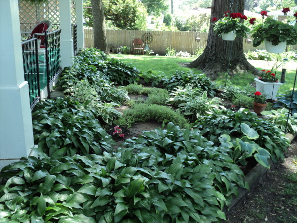 Porches and garden, Hostas shade garden and back porch, Hosta garden , Porches Design