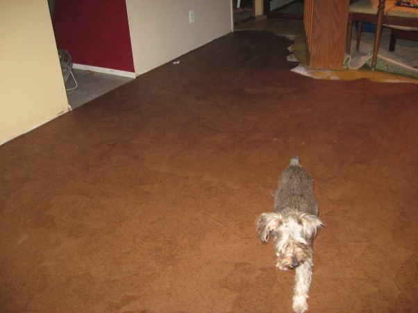 Brown bag floor, Can't afford wood floors so I decided to do brown bag floors in my house. , Other Spaces Design