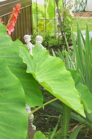 My summer gardens, My summer joy , This is one of my 7 Gardens --- The Childrens Garden, Gardens Design