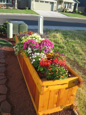 My front yard, It is a nice small yard and fairly easy to take care of, for the most part., This is a planter box my husband built, Gardens Design