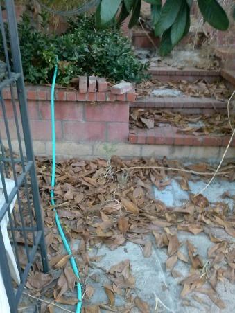 Back Yard, Backyard HELP, Backyard has a steep slope.....can you tell???, Yards Design