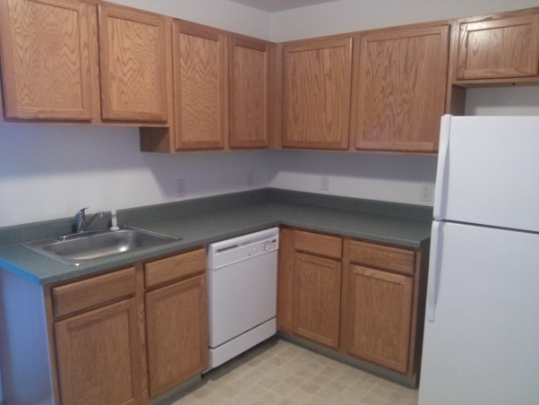 HELP! Oak cabinets, dark green counters, We're allowed to paint the walls and hang things, but nothing else. The walls are currently primed, so we need to do something. We have no idea what to paint. PLEASE HELP!, Sink side. Not as much natural light over here, and the wall ends right after the fridge. , Kitchens Design