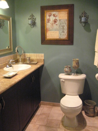 BLUE or GREEN?  It's in-between, I originally posted the reno pictures for this bathroom on here, however, HGTV accidentally erased them last year. The inspiration for this bathroom came from the colour of paint that you see on the walls.  I knew that this was the colour I wanted, and the rest of the bathroom progressed from there.  The funny thing about the colour is that sometimes it looks green and sometimes, blue, depending on the angle at which the pictures are taken and the lighting of course.  I guess paint has a habit of doing this.  Lol, Bathrooms Design