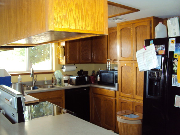 from the old to the new, total kitchen makeover with dark mahogany cabinets and recycled countertops., The dishwasher was inconvenient. The pantry was a deep hole., Kitchens Design