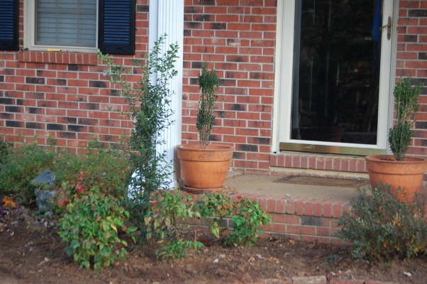 hard work paying off, Took some of the suggestions that I received.  Moved pots to the edge of the front porch.   Reworked the flower bed- put larger shrubs on each end- moved the spirea to the area where the stepping stones were.  Put drawf nandina's around the shrub on the left.   I love the way it look so far.  I still have to put more flowers around the shrubs in each area.  , Yards Design