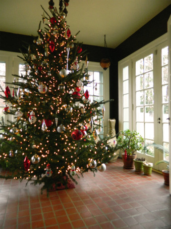 Christmas 2012, Christmas has arrived at our 1924 custom built, blonde brick, terracotta and copper roofed Italian villa-style home! Happy Holidays!, The tree in the sunroom during the day including the right side of the sunroom.    , Holidays Design