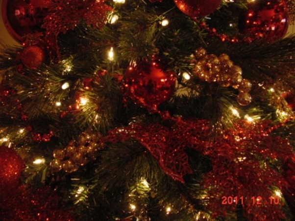 Chrismas Trees - Merry Christmas, HGTV Nation!, Chrismtas tree in different colors and different sizes. Classic to traditional., Red and gold classic christmas tree, Holidays Design