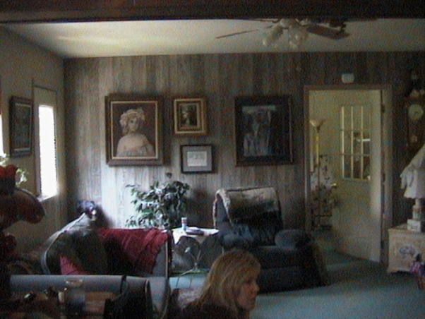 Open Floor Plan Lake House, I love my bright and airy living & dining rooms! This house has come such a long way since I bought it. , This is another before photo of the living room. Ugly carpet and wood paneling. Ugh! , Living Rooms Design