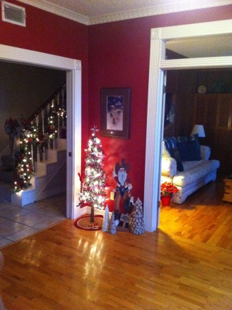 Christmas House, My house has several Christmas trees in all rooms dressed up in different themes. Some rooms have two or three trees.  It's so much fun decorating this house for Christmas., A view of the foyer tree from the dining room.  , Holidays Design