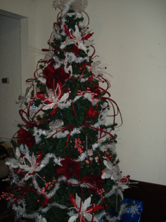 Christmas 2012, Holidays Design