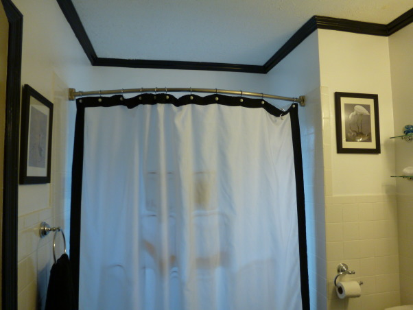 "Simply Black and White, Our tired old bathroom was blue and white 40s speckled  tile. It is a small bathroom in a house built in the 1940's. It may have been the worlds ugliest bathroom. We used tub and tile for dummies epoxy paint on the tile, it worked great. We took the door off the linen closet and painted the inside black, and left it open which made the room look larger. We put up styrofoam crown molding, which is much cheaper then wood, and is easy to install. We removed the big vanity and replaced it with a smaller one which opened up the room, and as a finishing touch I found a waterfall bathroom faucet which lights up when the water is turned on, blue for cold, green for warm, and turns red when the water is hot. We gutted and remodeled the whole bathroom for under fifteen hundred dollars. I love my ""new"" bathroom. My brother (Chris Mayne) is a really awesome avian photographer and I used his bird photos to finish off the walls., styrofoam crown molding (photo flash shows pockets in shower liner, this does not show when you are in the bathroom      , Bathrooms Design"