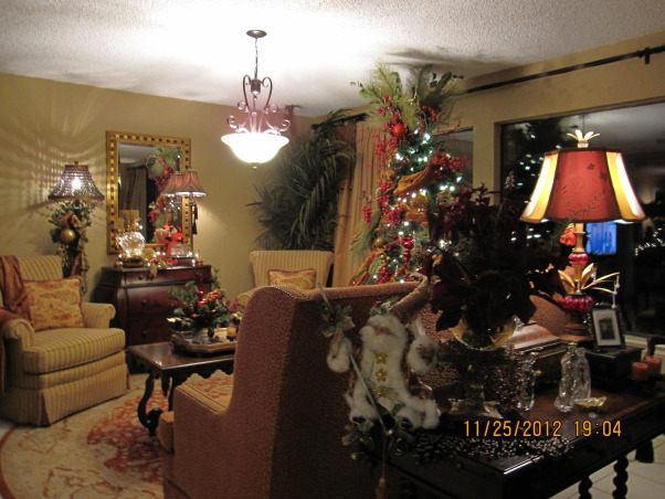 Texas Hill Country Christmas, There was no downside to our downsizing. We love our warm and cozy lake side cottage. ~Merry Christmas~ G, Holidays Design