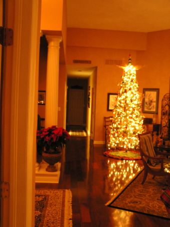 Ready for lift-off!, Glass tree with gold tree-top appears to be breathing fire from the top.  The reflection in the floor gives the tree life., Christmas 2012 tree at night, with flash. , Holidays Design